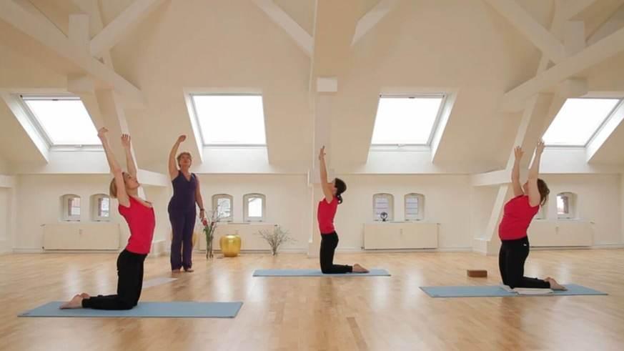 Yoga Video Der große Anfängerkurs mit Anna Trökes - Der Sonnengruß (Teil 5 von 10)