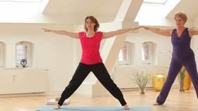 Yoga Video Der große Anfängerkurs mit Anna Trökes - Den Rücken stärken (Teil 6 von 10)