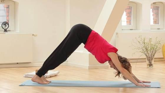 Yoga Video Der große Anfängerkurs mit Anna Trökes - Kraft im Bauch (Teil 7 von 10)