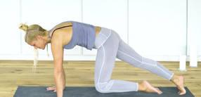 Besser Plank als Blank: Alles rund um die Planke