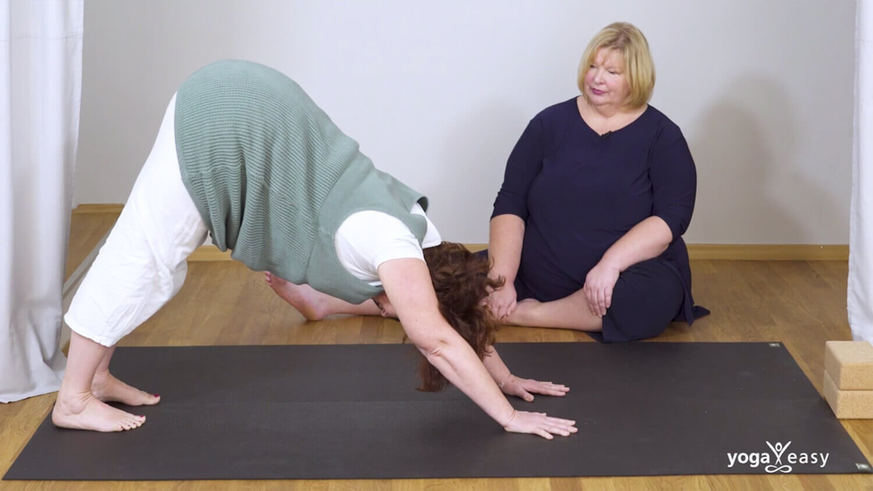 Yoga Video Yoga X-Large: Asanas aus dem Vierfüßlerstand