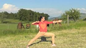 Yoga Video Die kleine Yogapause für mehr Energie