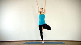 Yoga Video Clip: Vrikshasana (der Baum)