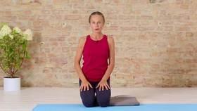 Yoga Video Hormon-Yoga Einführung