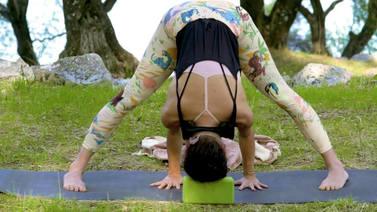 chakra_yoga_sahasrara_