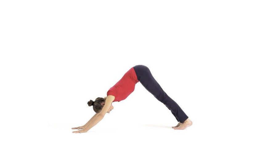 Yoga Video adho mukha svanasana (Herabschauender Hund)