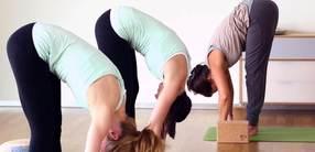 FaszienYOGA: Fascial Stretch & Rebound Elasticity – für Vitalität und Lebendigkeit