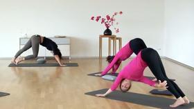 Yoga Video FaszienYOGA: Fluid Refinement – Verbundenheit & Einheit erfahren