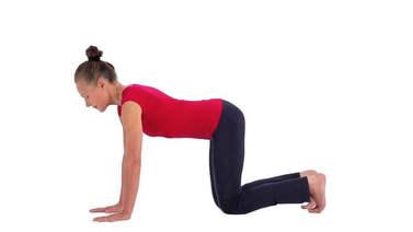 Yoga Video Von bharmanasana zu phalakasana zu chaturanga dandasana (Vierfüssler zu Brettstellung)